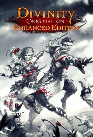 Divinity Original Sin - Enhanced Edition (v 2.0.119.430)